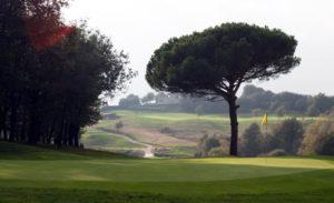 golf en barcelona club de golf montanya arbol y bandera amarilla