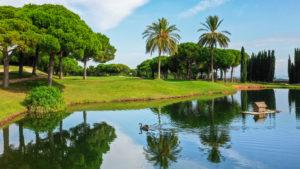 campo de golf llavaneras palmeras y lago con cisne