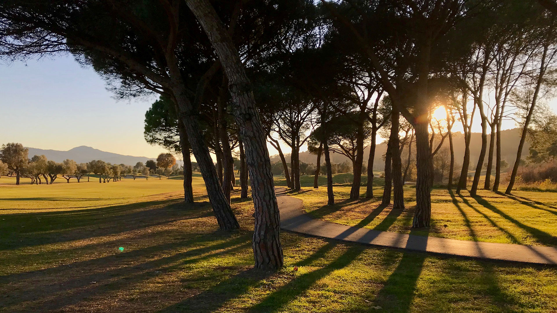 campo de golf la roca arboles atardecer y camino